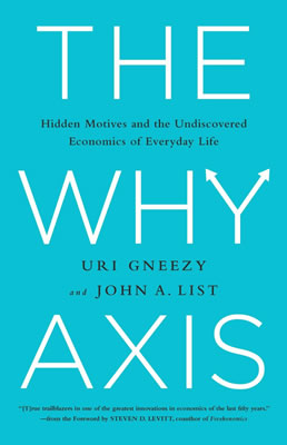 The Why Axis Book Cover